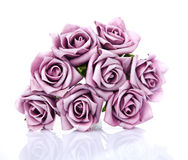 Bouquet of purple roses on a white background Royalty Free Stock Photography
