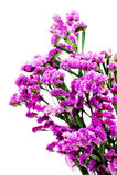 Bouquet from purple statice flowers arrangement centerpiece Stock Photo