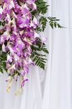 Bouquet purple swag Stock Photos