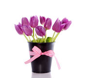 Bouquet purple tulips Stock Photo