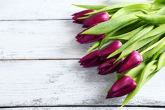 Bouquet of purple tulips on the boards Stock Images
