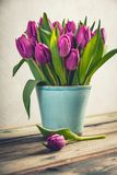 A bouquet of purple tulips in a vase Royalty Free Stock Photo