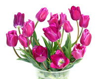 Bouquet of purple tulips on white. Bouquet of purple tulips isolated on a white background Stock Photo