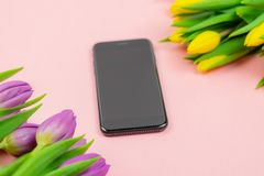 Phone and tulips on pink background stock photography