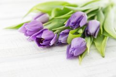 Bouquet of purpleviolet tulips on white rustic wooden backgrou Royalty Free Stock Photos