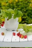 Bouquet of raspberries Stock Image