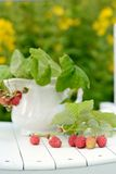 Bouquet of raspberries Royalty Free Stock Photography