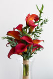 Bouquet of red calla lilies Stock Photo