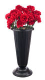 Bouquet of red carnation flowers iin black pot Royalty Free Stock Image