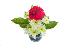 Bouquet of red carnations and chrysanthemum Flower Royalty Free Stock Images