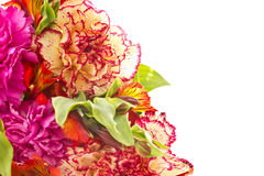 Bouquet of red carnations and chrysanthemums Royalty Free Stock Photo