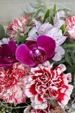 Bouquet of red carnations and purple orchid flowers Stock Photo