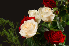 The bouquet red and creamy roses Stock Photos