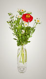 Bouquet from red daisy-gerbera and white aster in glass vase