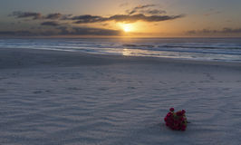 Bouquet of red flowers on beach at sunrise with cloudy sky Stock Photo