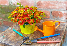 Bouquet of red flowers and garden tools Royalty Free Stock Images