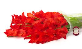 Bouquet of red gladiolus, wedding ring in box Stock Photo