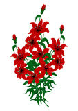 Bouquet of red lilies Stock Photography