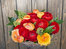 Bouquet of red and orange Ranunkulyus Stock Photos