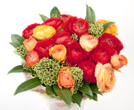 Bouquet of red and orange Ranunkulyus Stock Photography