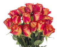 Bouquet of red-orange roses royalty free stock photos
