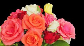 Bouquet of red,orange and of white roses on a black background.  Stock Images