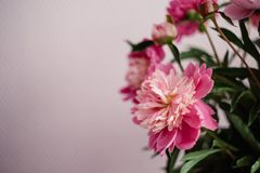 bouquet of red peonies in a vase on the white chair, wedding decoration stock image