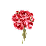 Bouquet of red and pink peonies Royalty Free Stock Photos