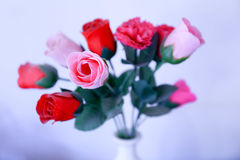 A bouquet of red and pink roses Royalty Free Stock Photography