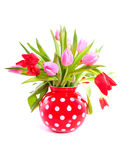A bouquet of red and pink tulips Stock Image