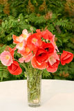 Bouquet of red poppies. Digital photo of a bouquet of poppies at green background stock image