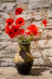 Bouquet of red poppies in clay jug on wooden table Royalty Free Stock Photography