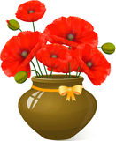 Bouquet of red poppies in clay pot. Royalty Free Stock Images