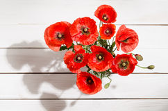 Bouquet of red poppies in glass vase. On old white wooden table Royalty Free Stock Photography