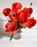 Bouquet of red poppies in glass vase Royalty Free Stock Photo