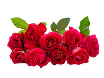 Bouquet of Red Rose Royalty Free Stock Photo