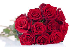 Bouquet of red roses. Red rose on a white background Royalty Free Stock Photo