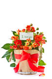 Bouquet of red roses Stock Image