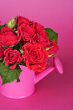 Bouquet of red roses Stock Photo