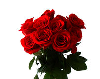 Bouquet of red roses Stock Images