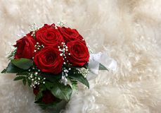 Bouquet of red roses. On a skin of white fur stock images