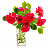 Bouquet of red roses Royalty Free Stock Image