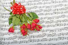 Bouquet of red roses on a background Stock Images