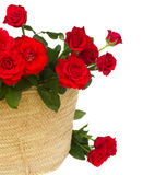 Bouquet of red roses in basket close up Stock Images