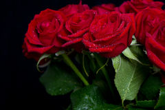 Bouquet of red roses on black Stock Photography