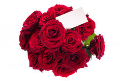 Bouquet of red roses with a blank. On a white background stock photos