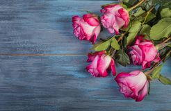 Bouquet of red roses. On a blue wooden background royalty free stock images