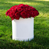 Bouquet of red roses. In a box Stock Images