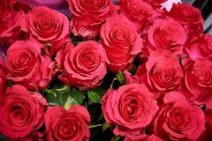 A bouquet of red roses close-up. Bouquet of red roses close-up stock image