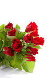 Bouquet of red roses in closeup Royalty Free Stock Photography